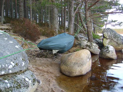 dd hammock   camping model hammock   camping model  rh   thebushcraftstore co uk
